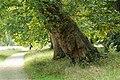 Ermenonville, parc Jean-Jacques-Rousseau 02.jpg
