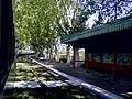 Estación Dolores (desde la formación) - panoramio.jpg