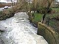 Evenlode Mill Race - geograph.org.uk - 309011.jpg