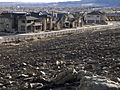 FEMA - 39772 - Burned area infront of intact homes in Colorado.jpg