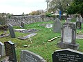 Fairy ring in Trefnant Churchyard - geograph.org.uk - 609287.jpg