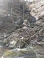 Fall Run Park in Shaler Township, late winter - 21.jpeg