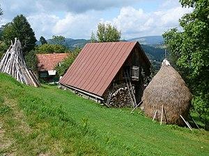 Arieșeni - Local farm