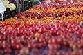 Farmers Market 018 (5926219672).jpg