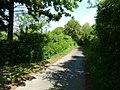 Feldweg bei Hohenwettersbach - geo.hlipp.de - 25058.jpg