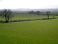 Fields Near Pierbanks - geograph.org.uk - 354800.jpg