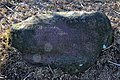 Findling, als Markierung der von Jakob Messikommer gefundenen 'Pfahlbauten' im Robenhauser Riet 2012-01-18 14-45-28.JPG
