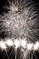 Fireworks - 20100724- DSC9173 (4831983311).jpg