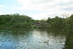 Fisher's Pond near Colden Common - geograph.org.uk - 46637.jpg