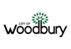 Flag of Woodbury, Minnesota