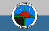 Bois Forte Band of Chippewa of the Minnesota Chippewa Tribe, Minnesota