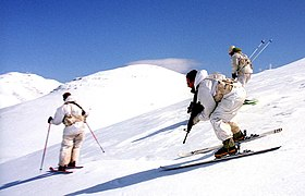 Flickr - Israel Defense Forces - Down the Slopes.jpg