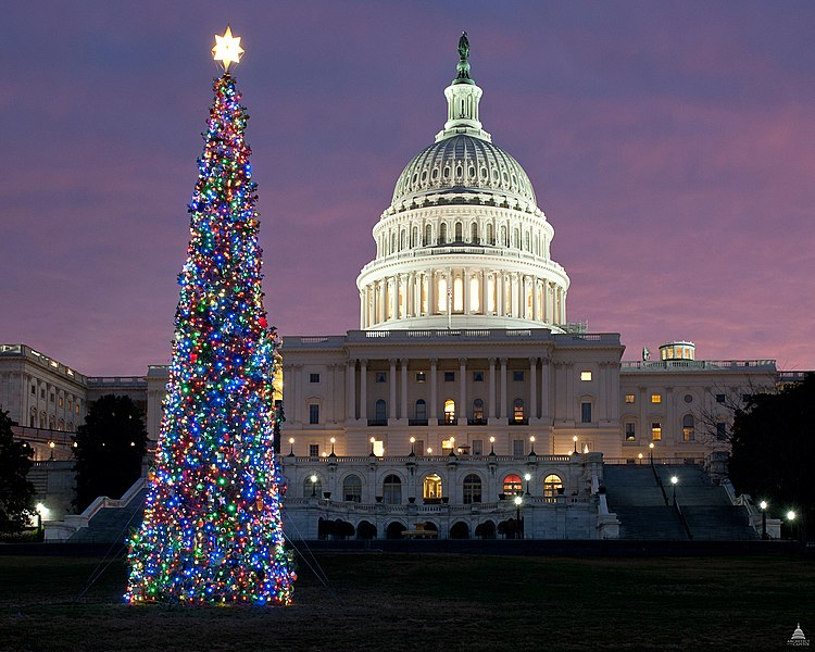 Capitol Christmas Tree 2011.jpg