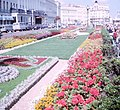 Flowerbeds on Eastbourne promenade, 1965 - geograph.org.uk - 910137.jpg