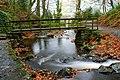 Footbridge, Glenoe glen (3) - geograph.org.uk - 617202.jpg