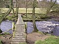 Footbridge River Wyre - geograph.org.uk - 121542.jpg