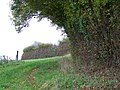 Footpath, Ryme Intrinseca - geograph.org.uk - 1568219.jpg