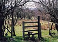 Footpath Prolley Moor to Medlicott - geograph.org.uk - 157624.jpg