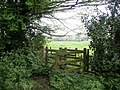 Footpath near St Andrew's Church, Firsby - geograph.org.uk - 432740.jpg