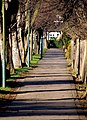 Footpath on Village Road - geograph.org.uk - 1129532.jpg