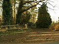 Footpath that leads to Hasketon Manor and beyond - geograph.org.uk - 328243.jpg