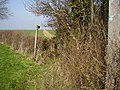 Footpath to Polebrook - geograph.org.uk - 378362.jpg