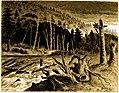 Forest Hymn pg 65.jpg