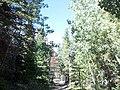 Fort Collins-Loveland, CO, CO, USA - panoramio (3).jpg