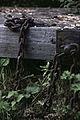 Fort Uitermeer IMG 8897 (14579988268).jpg