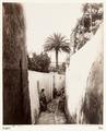 Fotografi. Capri, Italien. - Hallwylska museet - 107456.tif