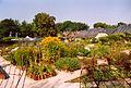 France Loir-et-Cher Chaumont-sur-Loire Jardin experimental.jpg