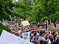 FridaysForFuture protest Berlin 31-05-2019 19.jpg