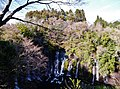 Fujinomiya Shiraito-Wasserfall 29.jpg