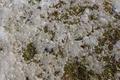 Fulda Kaemmerzell Fulda River Aue Flood River Plain Snow Melt Ice Pattern Det.png