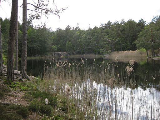 Göllersee 1
