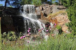 Gothenburg Botanical Garden - The Rock Garden at the Gothenburg Botanical Garden.