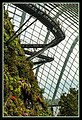 Gardens by the Marina Bay - Dome Clouds 05 (8331601981).jpg