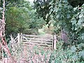 Gate into the woods, Snettisham - geograph.org.uk - 1517735.jpg