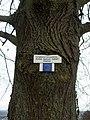 Gauangelloch - Europäischer Fernwanderweg E5.JPG