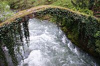 Georgia River Kintrishi Old Bridge.jpg