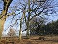 Glave Blick Richtung Dobbin 2011-03-03 212.JPG