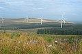 Glengennet Forest View - geograph.org.uk - 577527.jpg