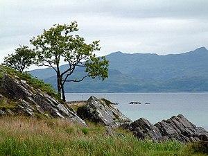 Glenuig - Image: Glenuig Bay geograph.org.uk 616320