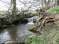 Glovershaw Beck, Bingley - geograph.org.uk - 762209.jpg