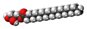 Space-filling model of the glycerol monostearate molecule