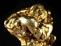 Gold-cat06c.jpg