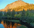 Gold in the Morning Sun, Mammoth Lakes, CA 9-16 (30837383013).jpg