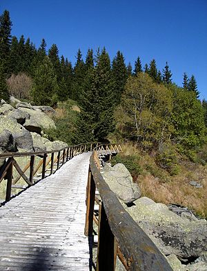 Bridge over Triagalna Gramada Stone River in B...via Wikipedia
