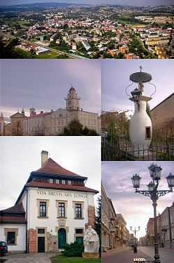 Top:Aerial view of Gorlice, 2nd left:Gorlice City Hall and City Square, 2nd right:A monument of the first time kerosene lamp set place, Bottom left:Sztuki Dwor Karwacjanow Gallery in Wroblewskiege, Bottom right:Three Maja Street