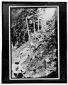 Great Smoky Mountains National Park Roads and Bridges, Gatlinburg, Sevier County, TN HAER TENN,78-GAT.V,6-35.tif